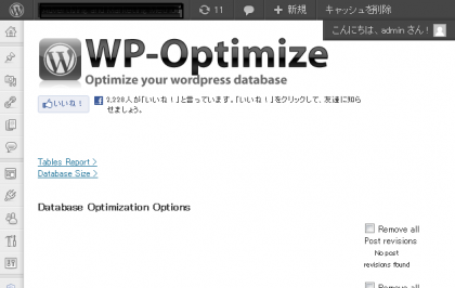 WP-Optimize - Advertising and Marketing Method - WordPress